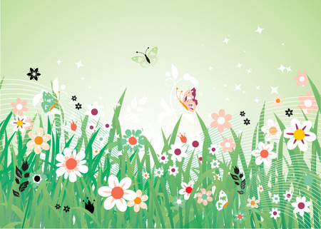 grass blades: Spring meadow beautiful