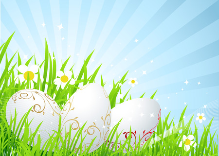 Easter eggs on the spring  meadow Vector