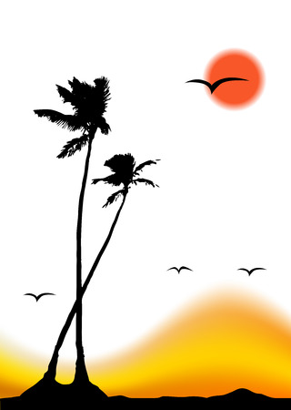 Tropical sunset, palm tree silhouette Vector