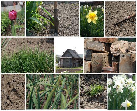 Spring work collage Stock Photo - 4961673