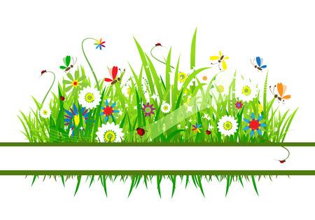 grass vector: Summer meadow beautiful
