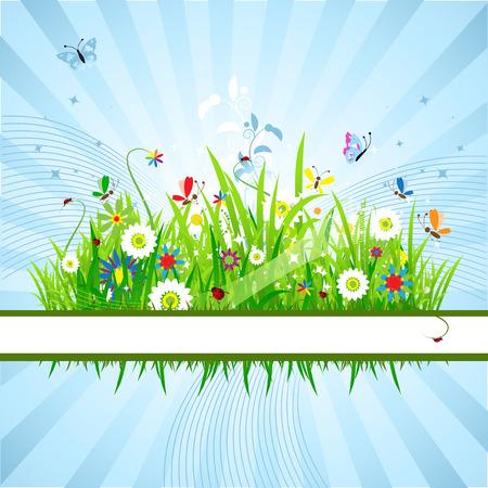 Summer meadow beautiful Stock Vector - 5186792