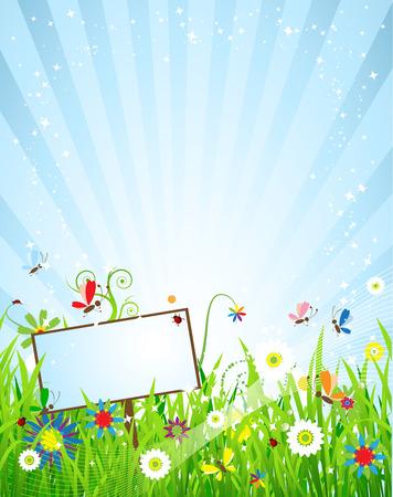 zomer: Weide mooie zomer Stock Illustratie