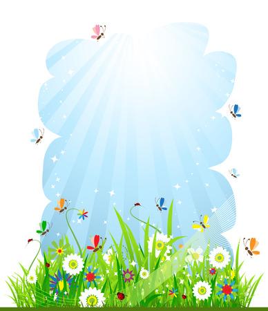 Summer meadow beautiful Stock Vector - 5186790