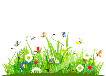 Summer meadow beautiful Stock Vector - 5186788