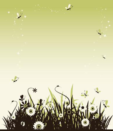 Summer meadow beautiful Vector