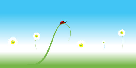 Ladybug, spring background Stock Vector - 5268116