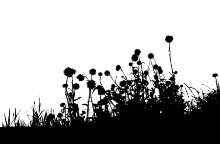 weeds: Grass silhouette black