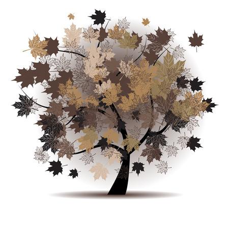 autumn leaves falling: Maple tree, autumn leaf fall