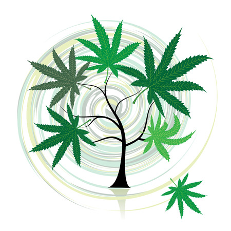 Cannabis tree Vector