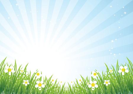 Printemps meadow belle