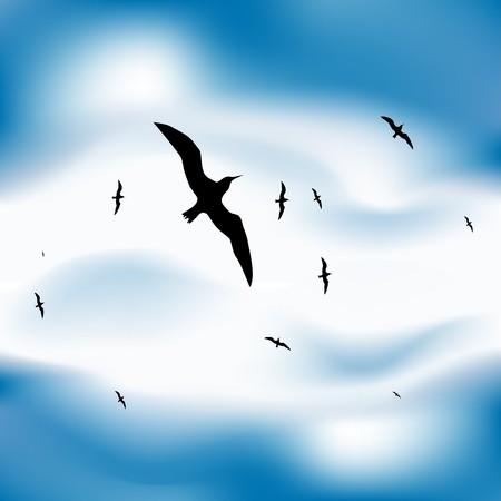 Vögel fliegen in Himmel