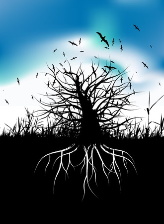 dry grass: Tree silhouette with roots