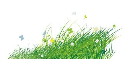 Green field with butterflies, summer background Stock Vector - 7199651