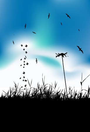 Summer meadow and birds in sky, black silhouette Vector