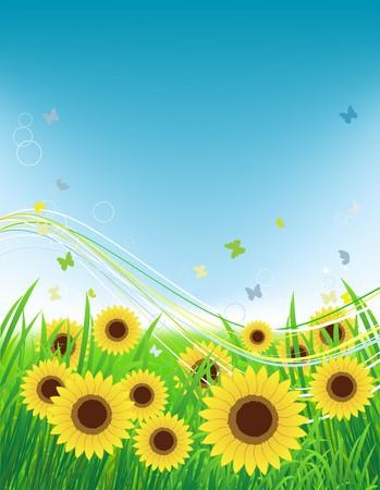 Summer meadow, sunflowers field and butterflies Vector