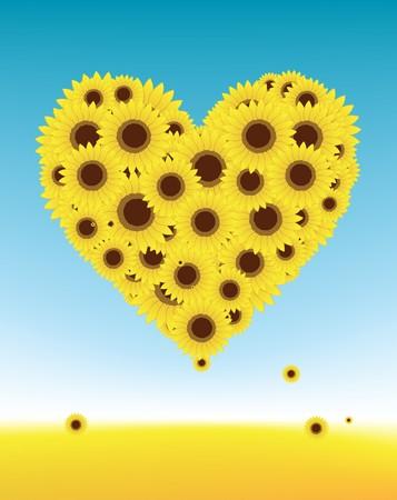 Sunflowers heart shape for your design, summer field Vector