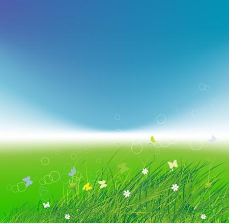 Green field with butterflies, summer background  Vector