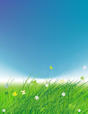 Green field with butterflies, summer background Stock Vector - 7509313