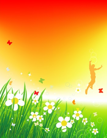 Sunset on green field, summer background  Vector