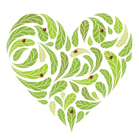Leaves green heart shape with ladybugs for your design Stock Vector - 7715270