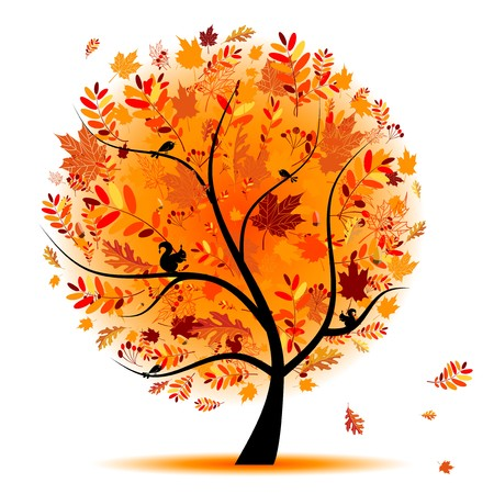 tree in autumn: Beautiful autumn tree for your design
