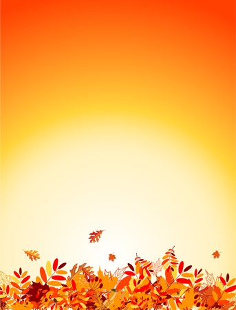 falling leaves: Autumn leaves background for your design