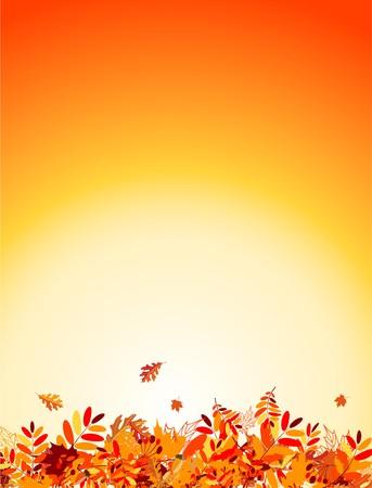 Herbst Laub Hintergrund für Ihr design