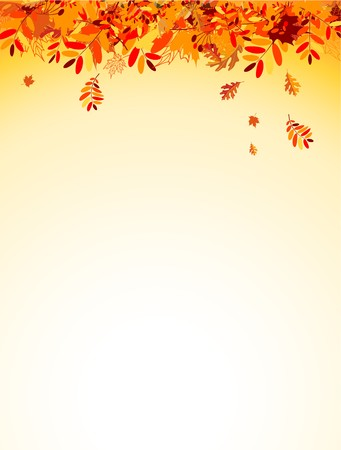 border cartoon: Autumn leaves background for your design