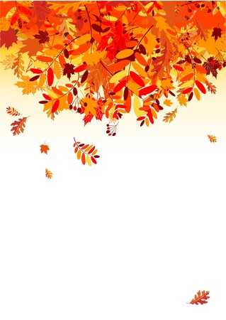 Autumn leaves background for your design Stock Vector - 7770162