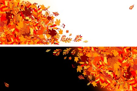 falling leaves: Autumn leaves banners for your design
