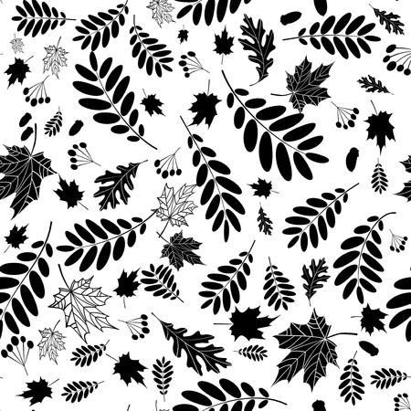 foglie di quercia: Sfondo trasparente per la progettazione di foglie di autunno  Vettoriali