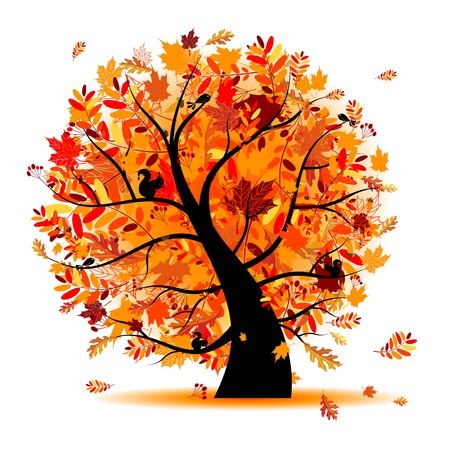 squirrel isolated: Beautiful autumn tree for your design