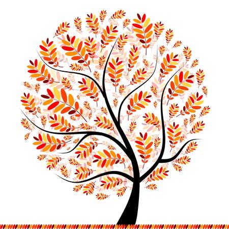 orange tree: Beautiful autumn tree for your design