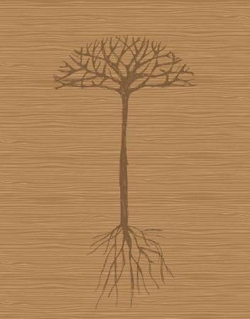 boom wortels: Art boom met de wortels op houten achtergrond  Stock Illustratie