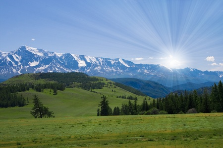 Nature landscape, meadow and mountains, wildlife of Altay Stock Photo - 8279379