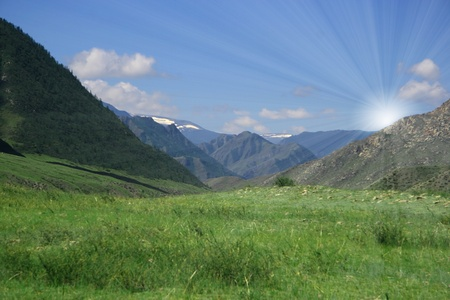altay: Nature landscape, meadow and mountains, wildlife of Altay Stock Photo