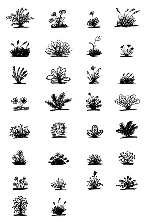 30 sketch of plants for your design Stock Vector - 10291524