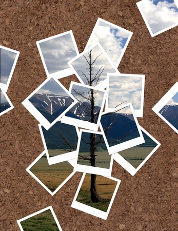 Landscape, collage of photos for your design photo