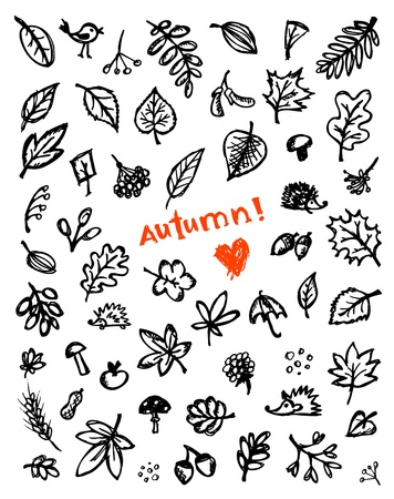 Autumn background, sketch drawing for your design Stock Vector - 10724004