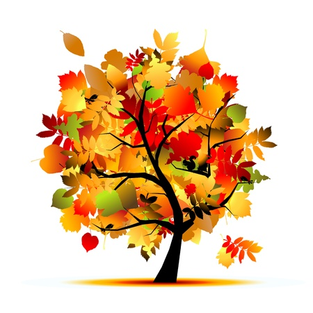 tree in autumn: Beautiful autumn tree for your design  Illustration