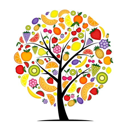 kiwi fruit: Energ�a de �rboles frutales para su dise�o Vectores