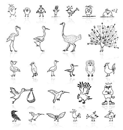 airone: Schizzo di uccelli divertenti per il vostro disegno