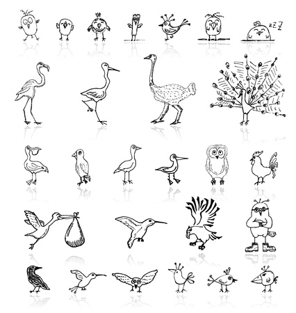black stork: Sketch of funny birds for your design