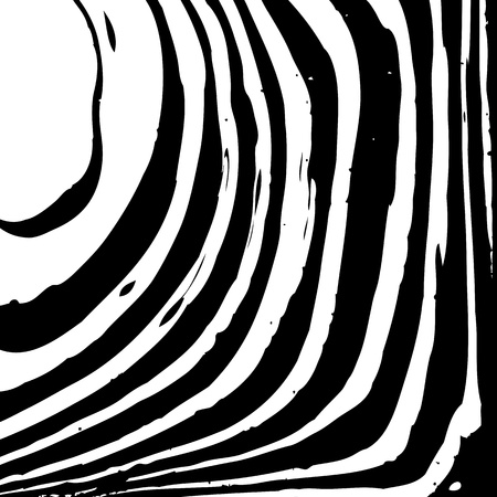 Abstract background with zebra pattern for your design Vector