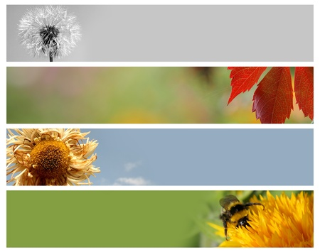 Nature banners for your design photo