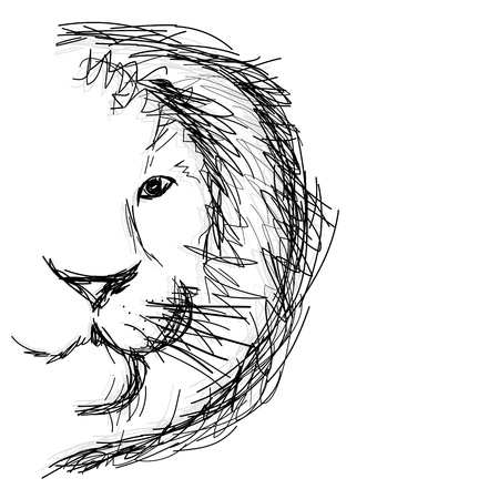 Sketch of lions head for your design Illustration