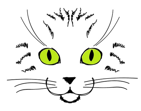 whiskers: Cute cat face, hand drawing for your design Illustration