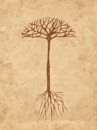trees with roots: Sketch tree with roots on old grunge paper