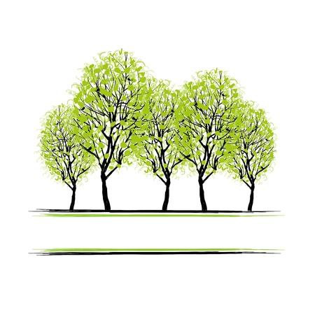 familia parque: Arboleda verde con �rboles para su dise�o Vectores